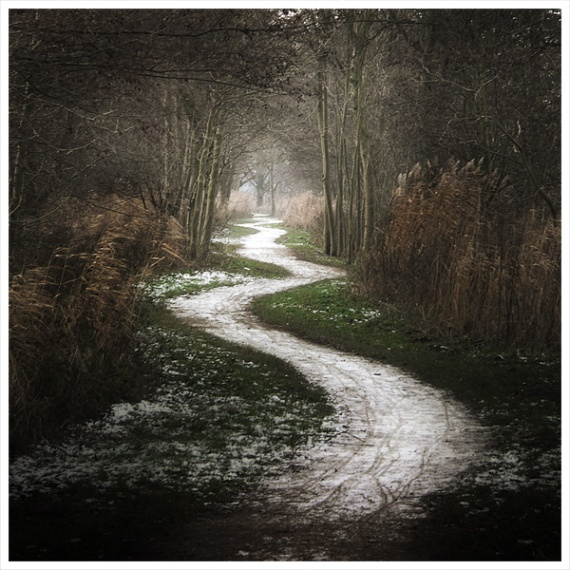 The Shepherdless Path